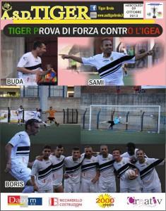 Tiger-Igea foto sintesi di Coppa