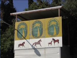 """Ad ospitare l'iniziale è il club ippico """"La Palma"""" di Messina"""