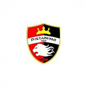 logo Pistunina