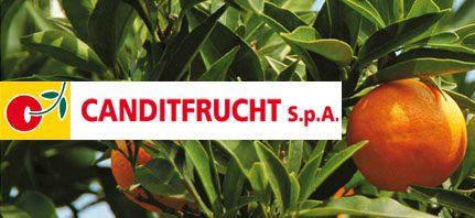 Logo Canditfrucht