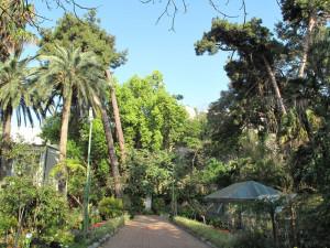 L'orto botanico di Messina