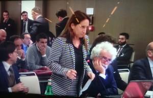 Il sostituto Antonella Arpini