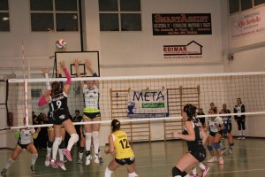 Sarecena Volley