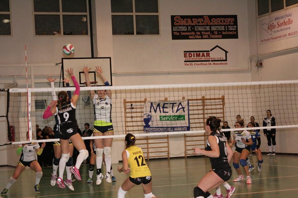 Sarecena Volley