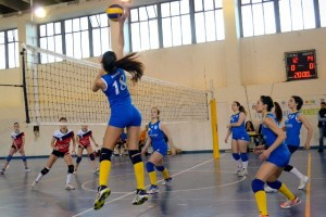 Orlandina Volley
