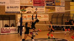 All Work Saracena Volley