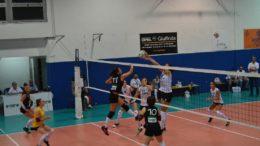 Akademia Volley