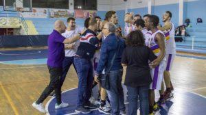 Gioia Castanea Basket
