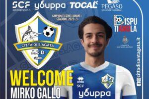 Mirko Gallo