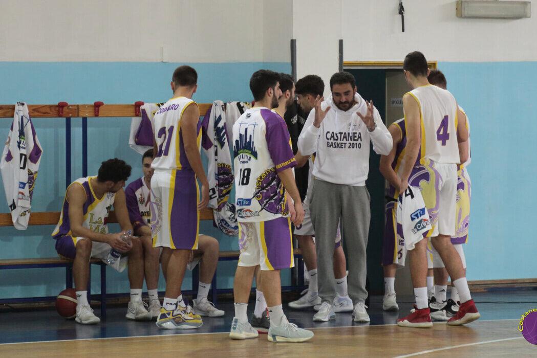 Castanea Basket