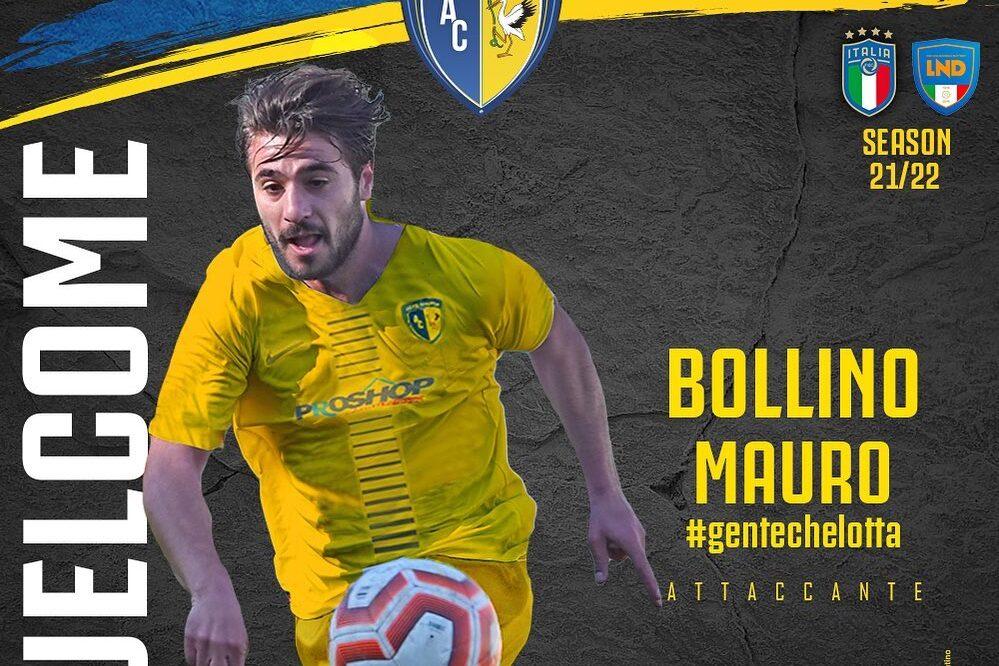 Mauro Bollino