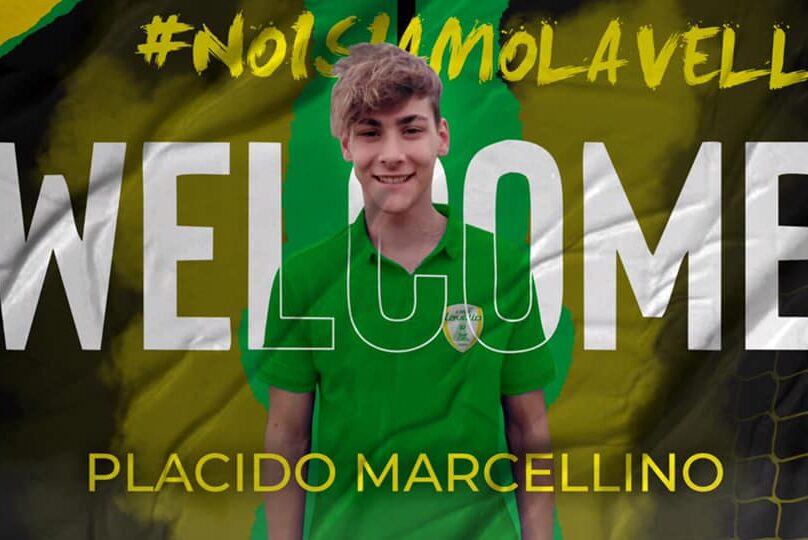 Placido Marcellino